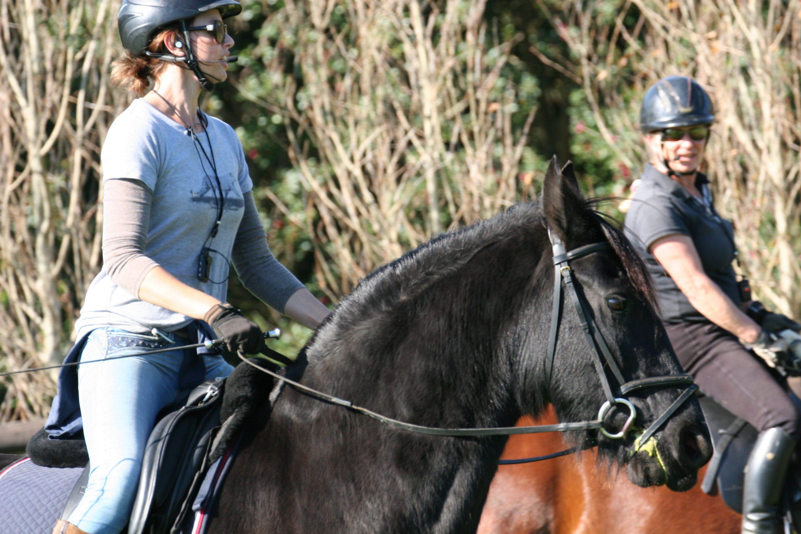 axiwi-draadloos-communicatie-systeem-paardrijden
